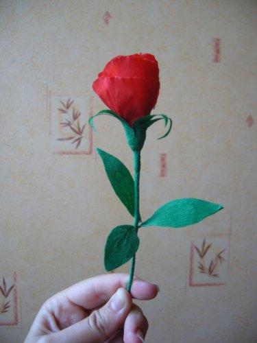 Цветы из бумаги отличный подарок